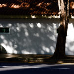 Shadows of tree branches and leaves create an interesting texture on a white, historical wall and a worker crouching in front of it