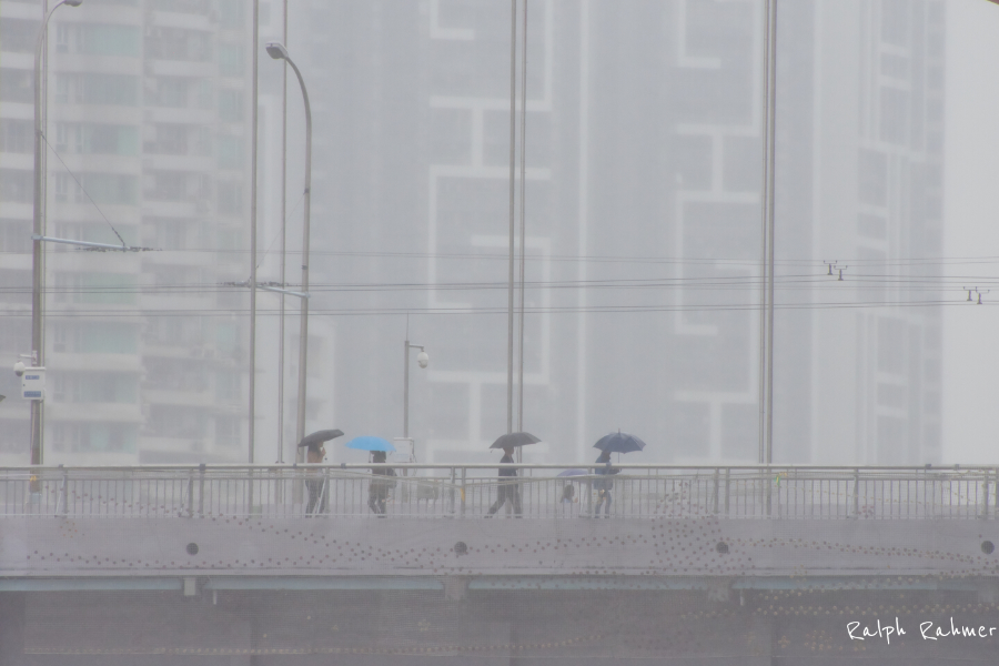 Photo of people crossing a bridge in drizzling rain. Their umbrellas provide subtle colour accents against the almost monochromatic background