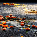 Kumquat fruits spilling over the asphalt from a discarded Lunar New Year Tree